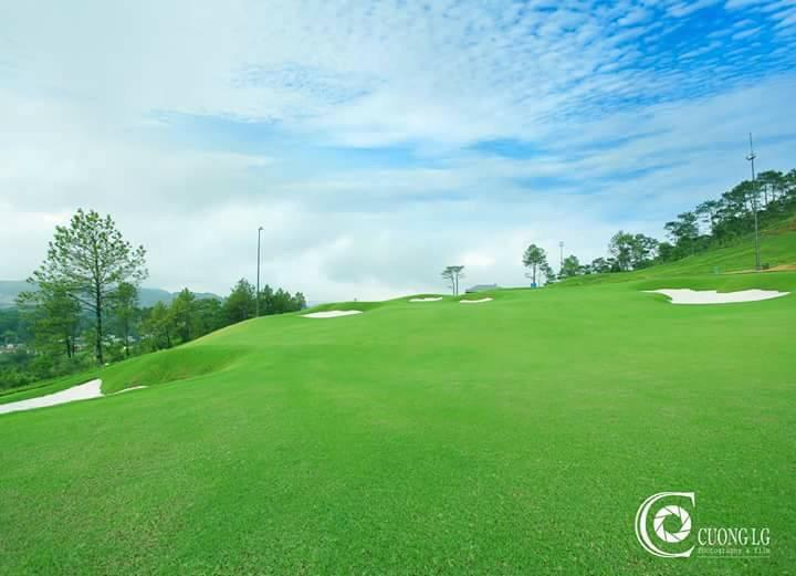 Cảnh quan sân golf flc Hạ Long